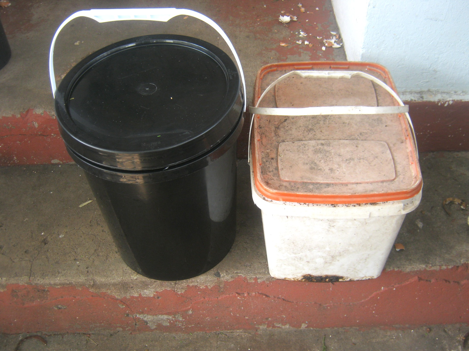 2 very basic worm bins. The white one has been in use for years.