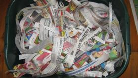 Torn newspaper for starting-a- worm-farm