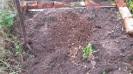 Dieses kleine Stück Land wurde für meinen Gemüsegarten genutzt