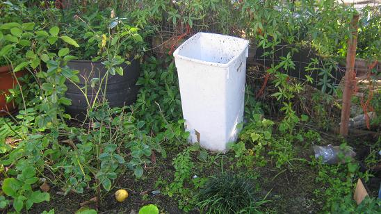 A simple homemade worm bin.