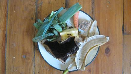 Many kitchen scraps make good worm food.