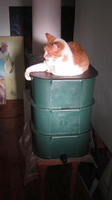 My cat Twenty enjoying herself on a 3 tier worm farm consisting of 3 bins, a tap, and a lid.