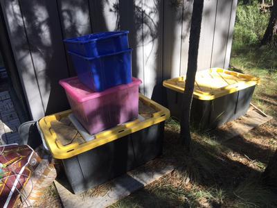 View of worm bins