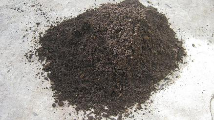 A pile of freshly harvested worm castings is a great natural soil conditioner