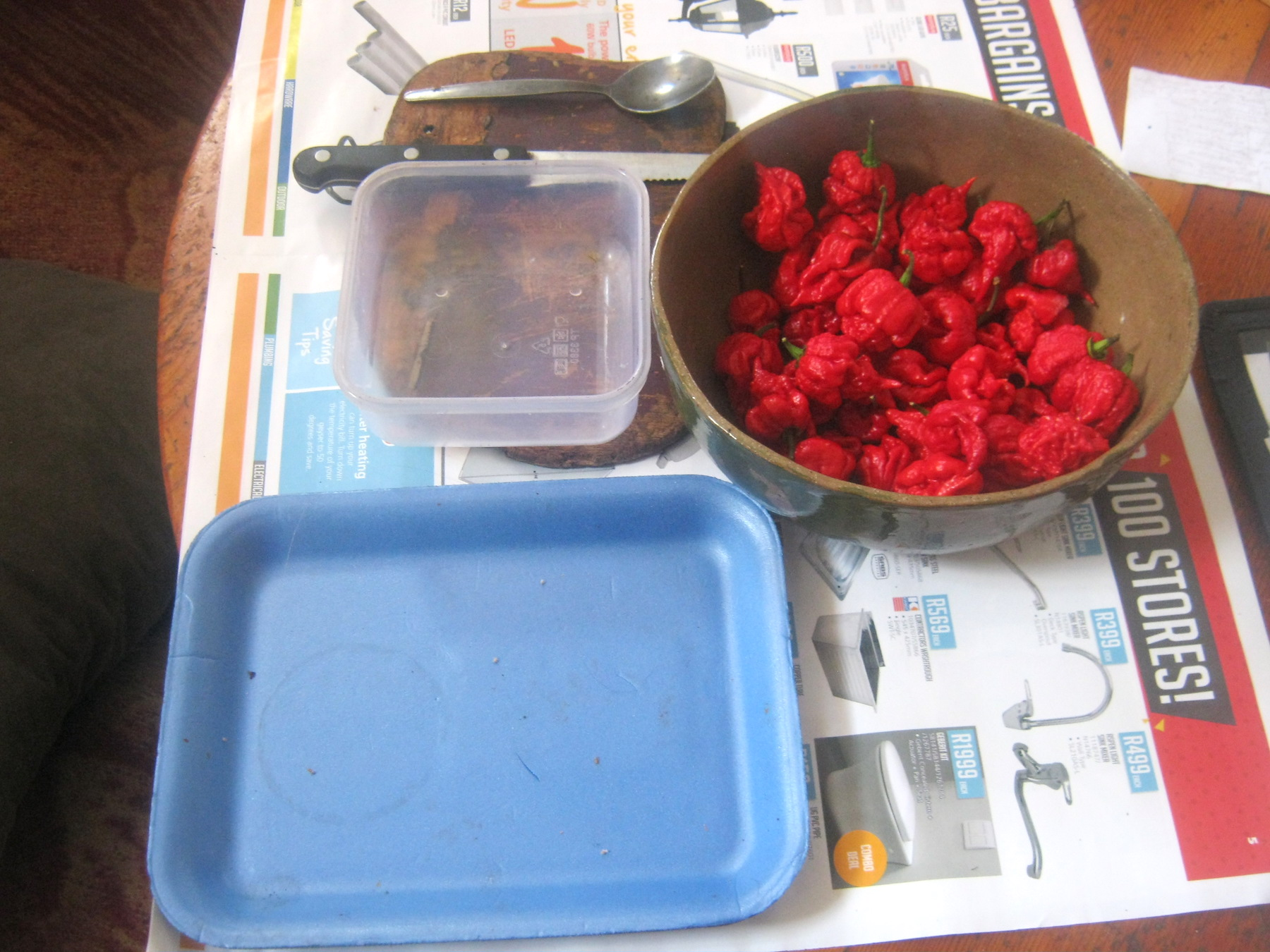 Ripe Carolina Reaper chilis and tools for seed harvesting on a table