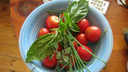 Schmackhafte Bio-Tomaten und Basilikum aus unserem Garten.