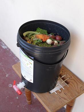 Kitchen scraps in a worm bin