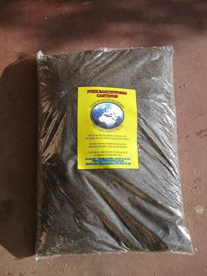 Bag of worm castings